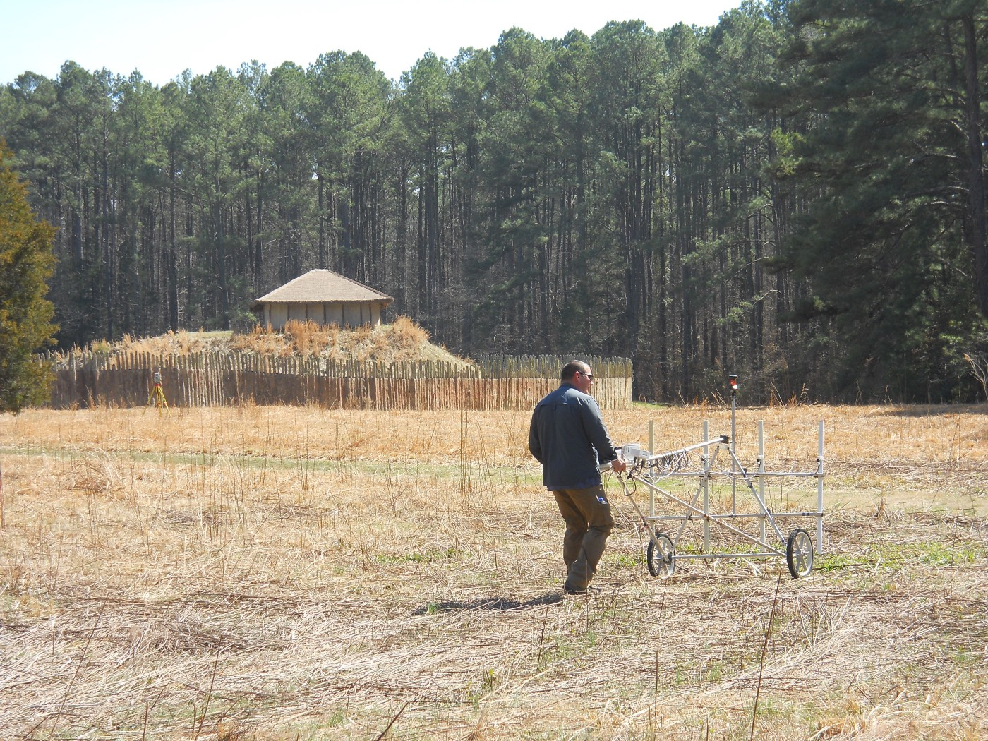 Dr. Chet Walker is operating magnetic survey equipment across the prairie with the mound at Town Creek Indian Mound visable.