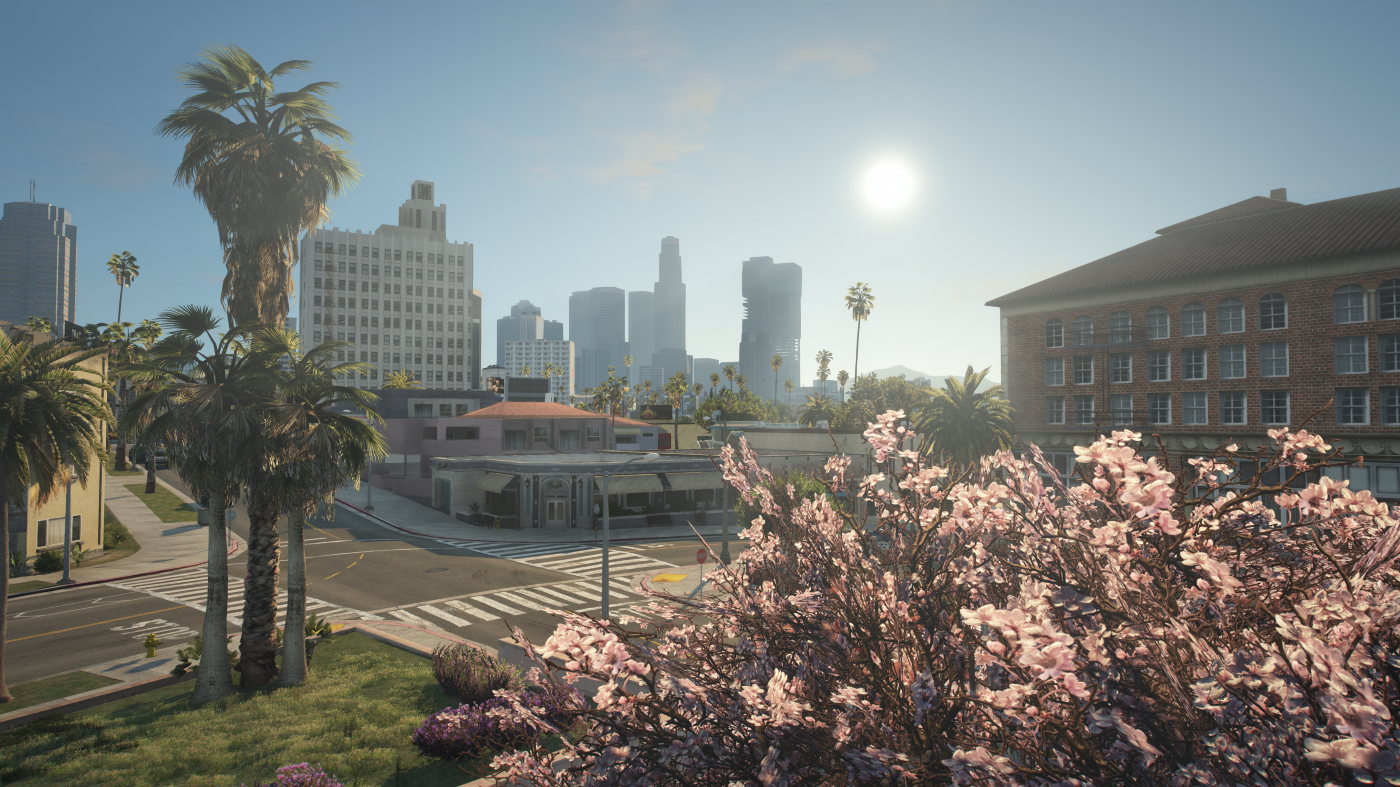 Cherry blossom and palm trees on dayli sunlight.