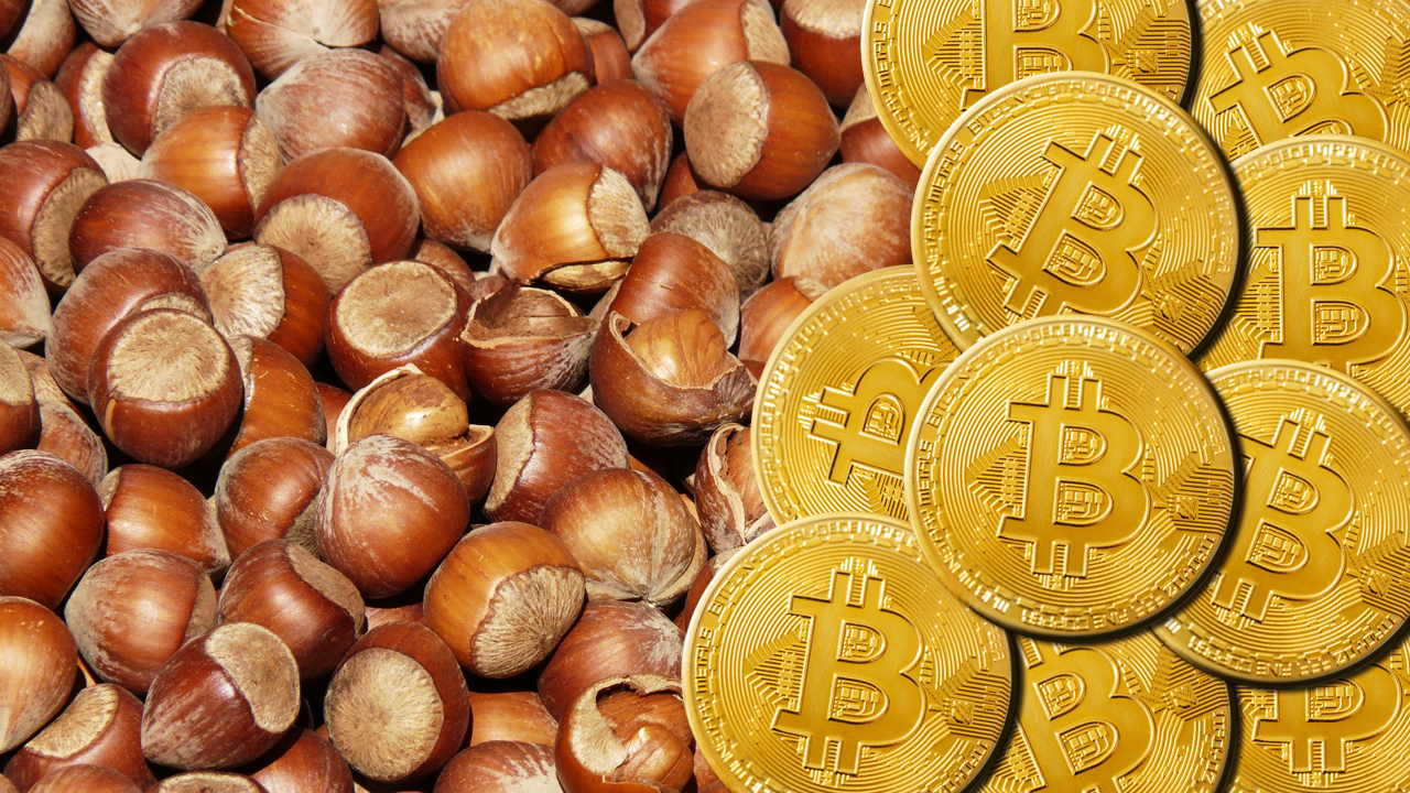 An image with nuts on the left and Bitcoins on the right.
