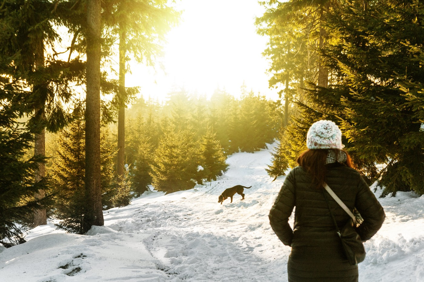 A woman walking her dog in snowy woods