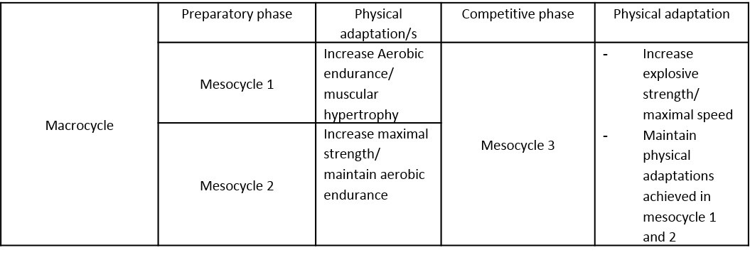 Periodisation: It isn't easy - MDM Boxing - Medium