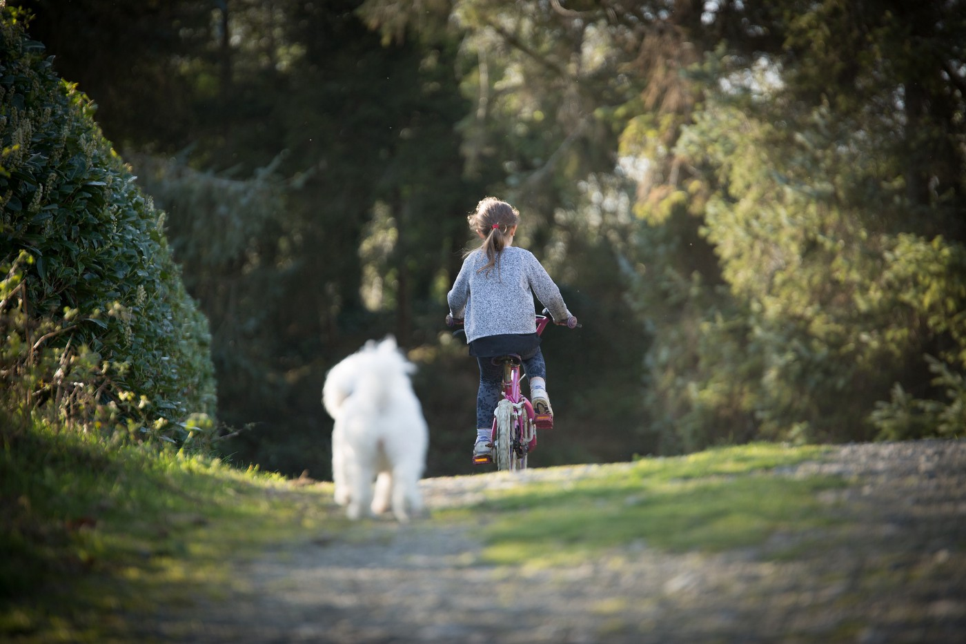 A girl rides a bicycle in a natural road followed by her little white dog