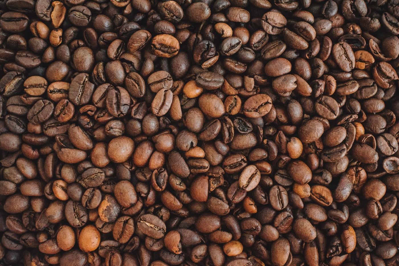 Close-up image of medium roast coffee beans.