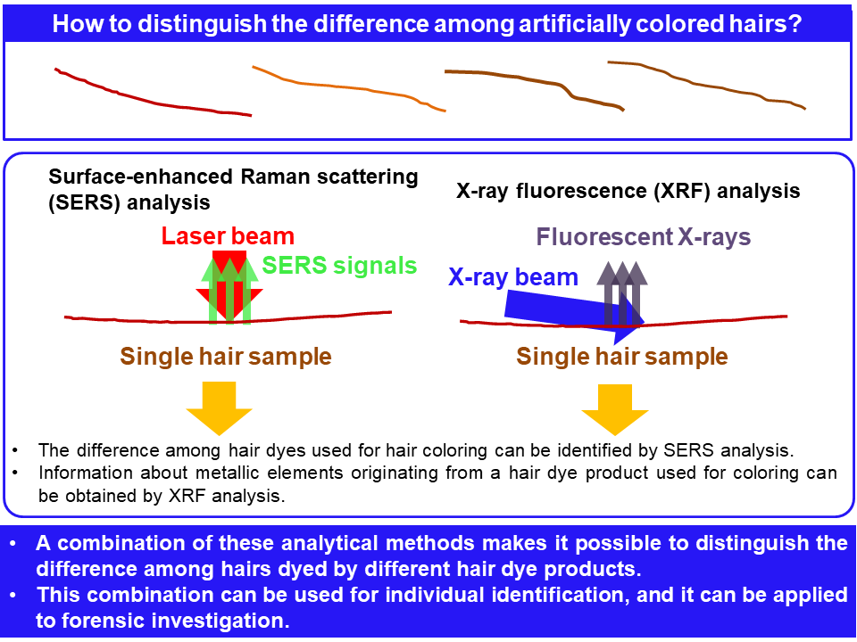 Analytical techniques to distinguish between two single strands of colored hair