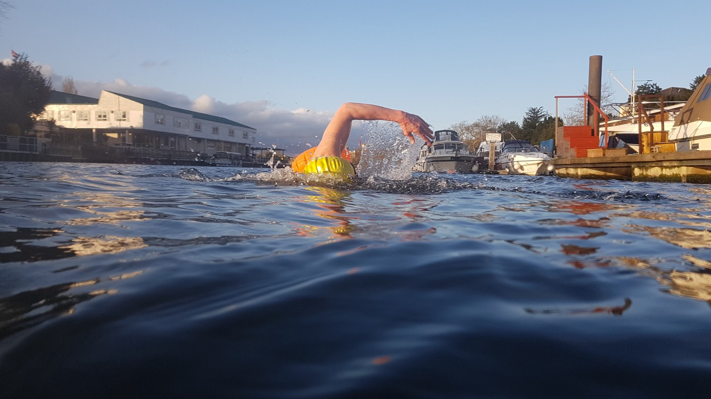 A person swimming in the River Thames