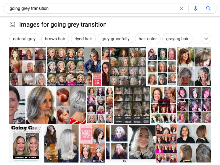 """screenshot of results from a web search on the term """"going grey transition."""""""