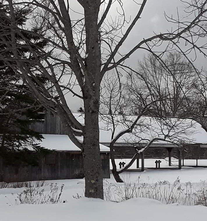 A snow-covered barn surrounded by a bare tree and an evergreen.