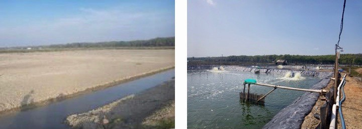Before and after photos of a shrimp farm in Indonesia