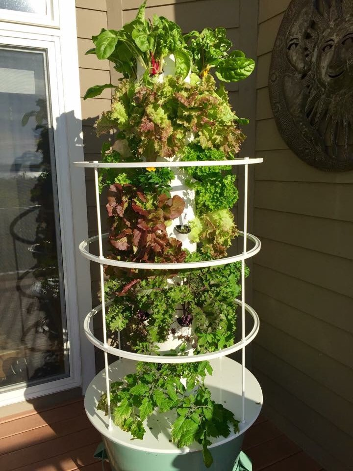 Tower Garden By Juice Plus I Ve Been Focusing A Lot On Food In My By Ff Ffff Medium