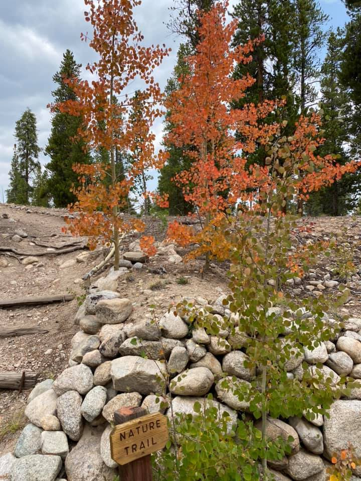 A path curves across a rocky hillside past a wooden nature trail sign. Trees line a path covered with red and orange leaves.