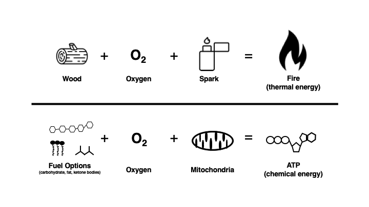 Diagram showing similarity between making a fire and energy.