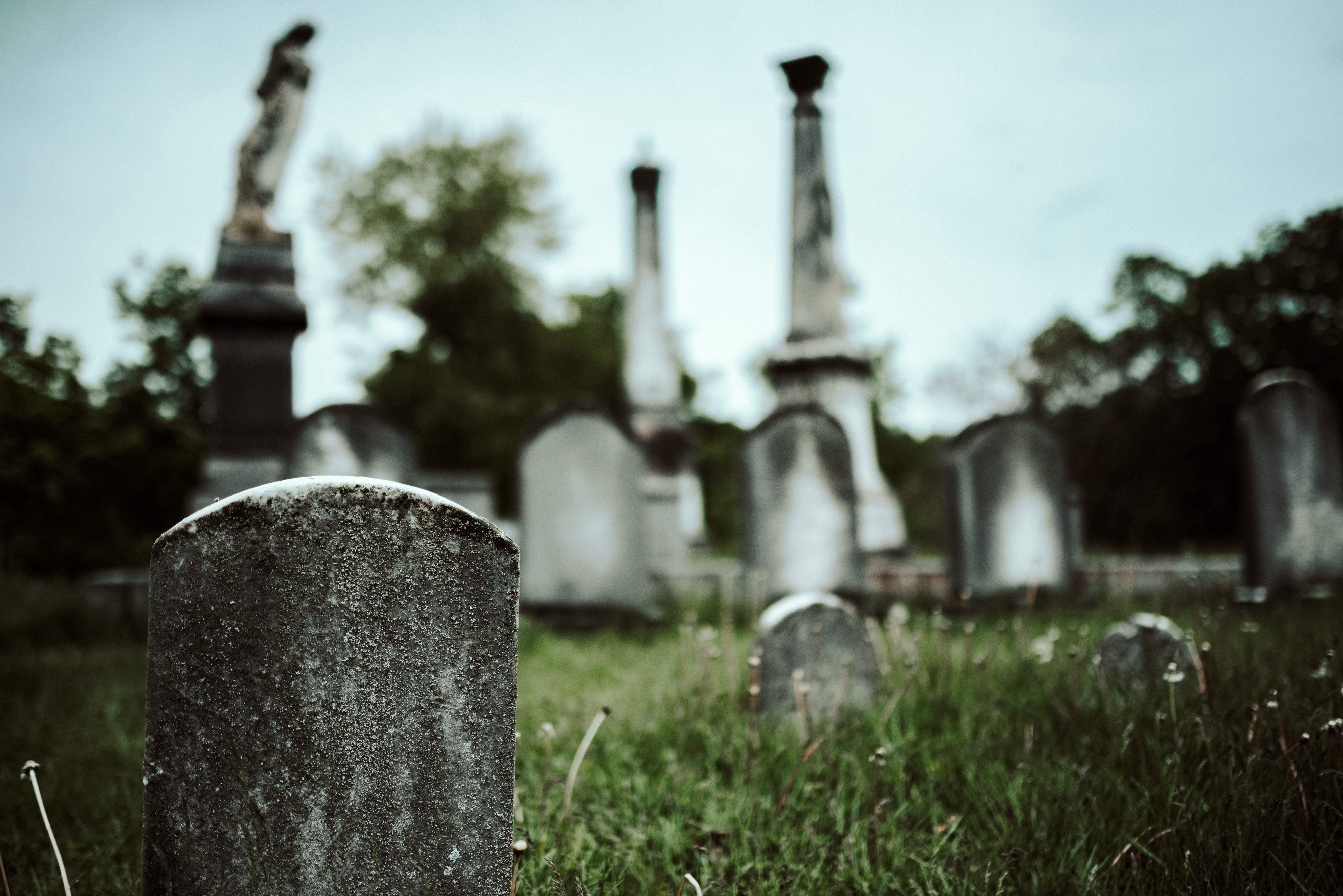 A cemetery. It's not that spooky, really.