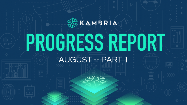 Kambria Progress Report -- August 2019 Part I