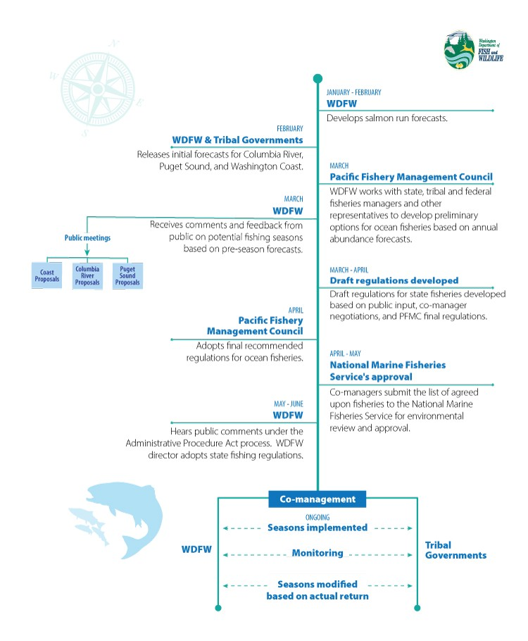 Infographic depicting the timeline for North of Falcon process