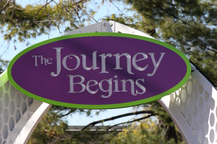Beverly Diltz—The Journey of Change Begins with Each of Us
