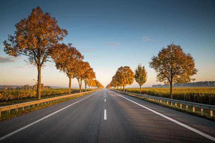 An image of a long, straight road.