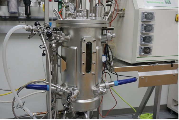 A Standard Microbial Bioreactor (Comparable to Hot-side Brewing Equipment)