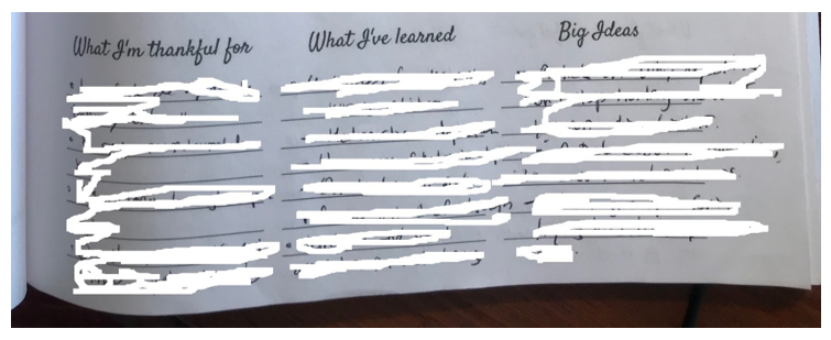 Example of the gratitude, learnings and big ideas prompts in the author's journal