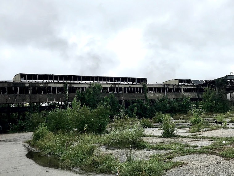 The Old Factory in Bihac, Bosnia. Rows of glassless windows stare down on concrete overrun weeds.