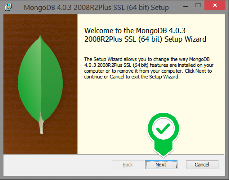 How to Download & Install MongoDB on Windows - London App
