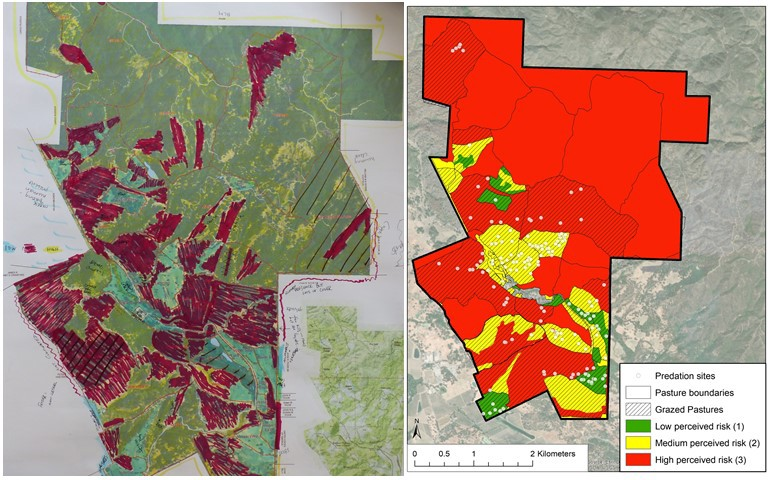 Fig. 2. We combined hand-drawn maps of coyote risk levels by ranchers (left) to create an overall perception risk map (right).