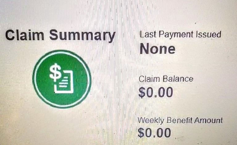 This is a picture taken by the author of the computer screen showing an unemployment claim that pays $0.00.