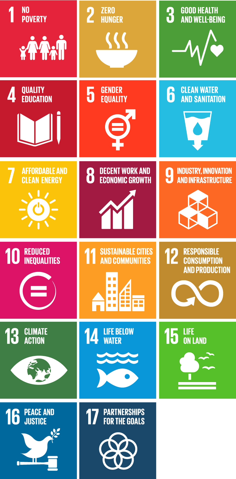 Chapter 1: Getting to know the Sustainable Development Goals