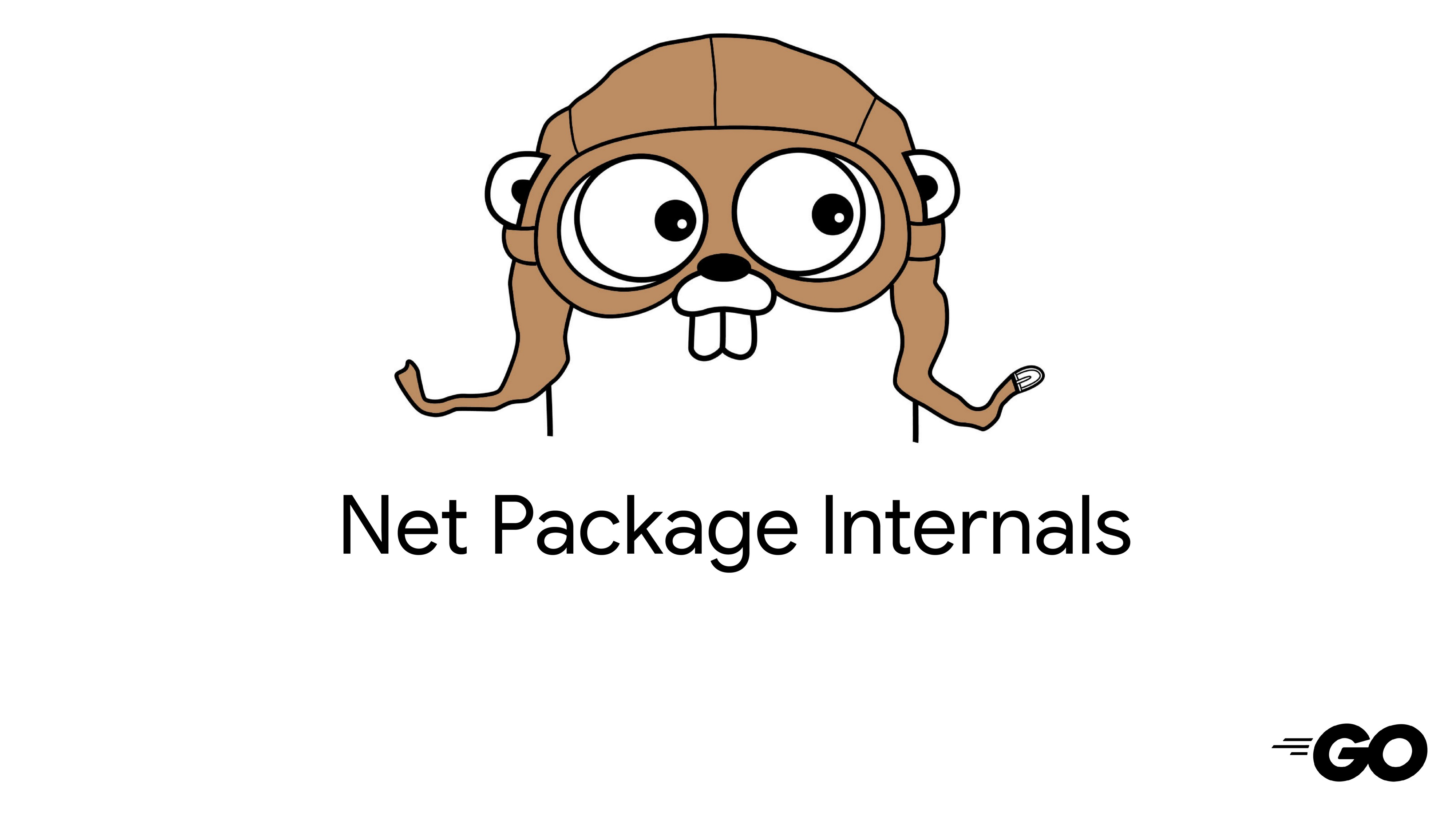 Sockets: The Genesis of Golang Connections — Golang net pkg #1