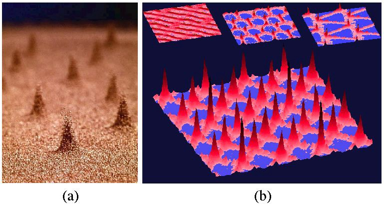 (a) Array of 'oscillons' from granular vibration experiment and (b) Patterns from simulations of 32767 idealized particles (image courtesy Paul Umbanhowar, Northwestern University and Harry L Swinney, University of Texas, Austin)