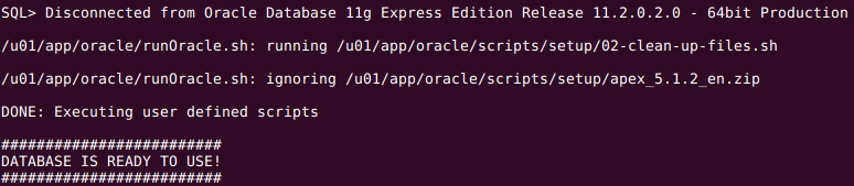 Using post-install script of Docker Oracle XE images to