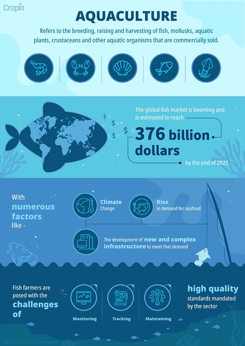 An infographic on acquculture