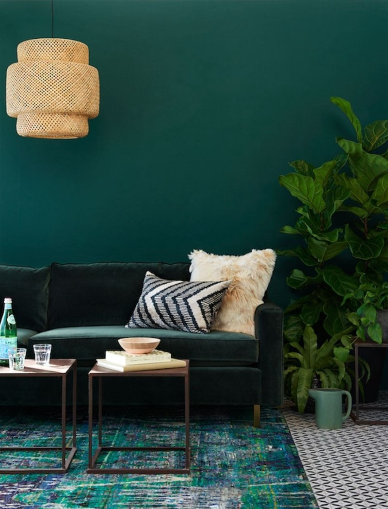 Merveilleux Find What Are The 3 Best Shades Of Green Wall Paint For ...