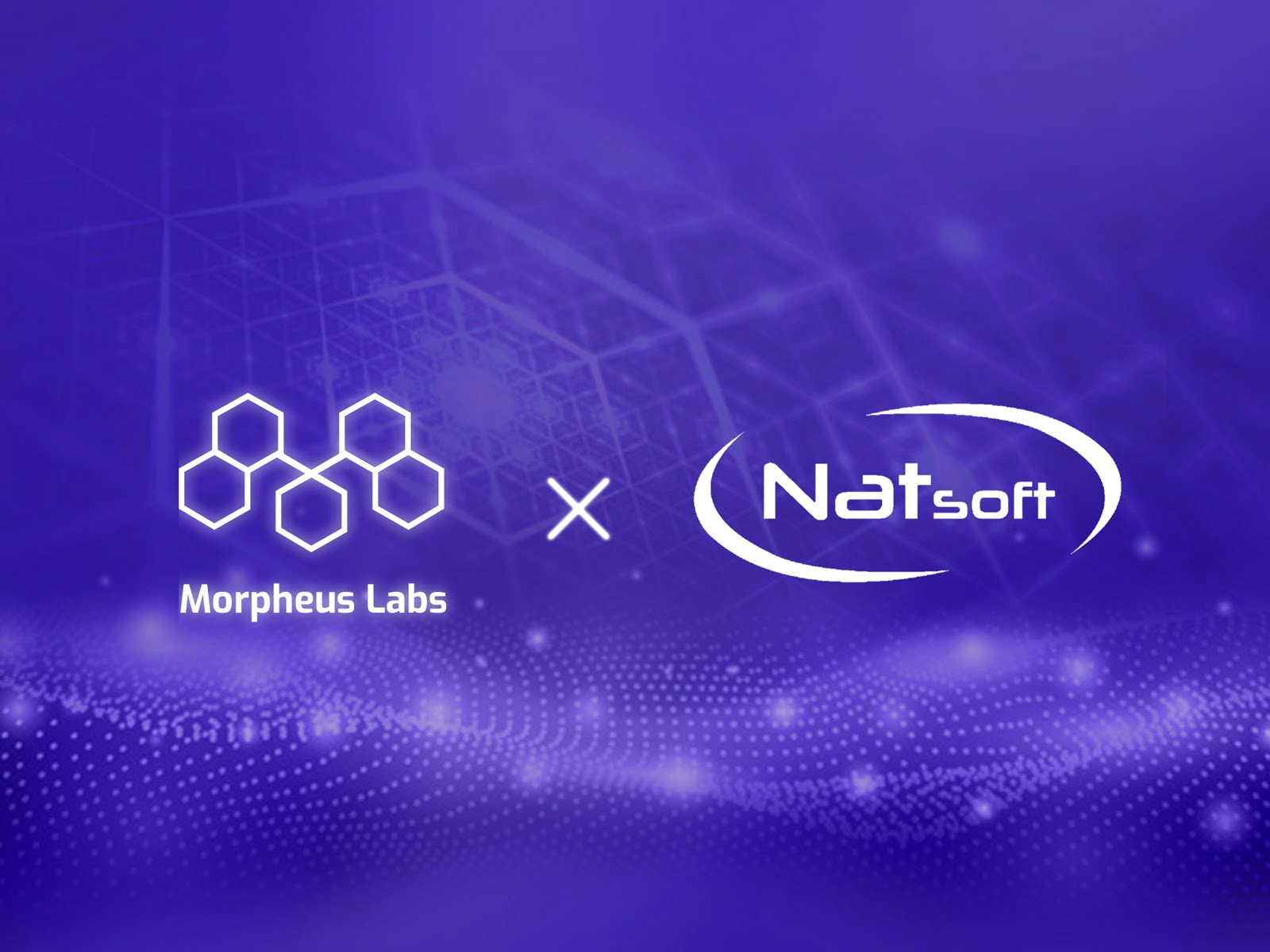 Morpheus Labs and Natsoft Corporation Team Up To Boost Value For Clients Through Unique Blockchain Solutions