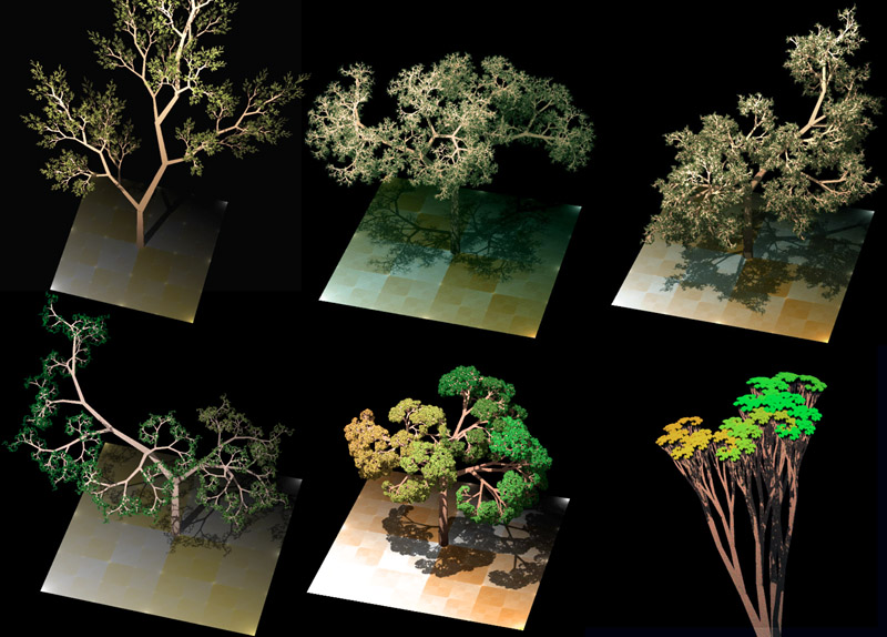 Procedurally generated trees