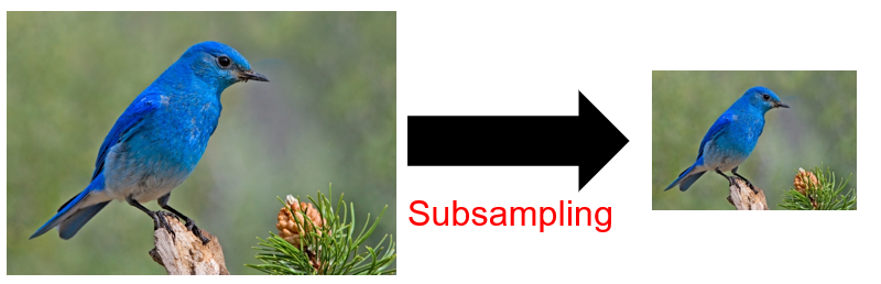 Figure 20: Subsampling by pooling. | Convolutional Neural Networks (CNNs)