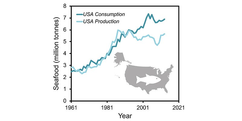 A graph representing seafood production vs consumption in the USA from 1961 to 2021