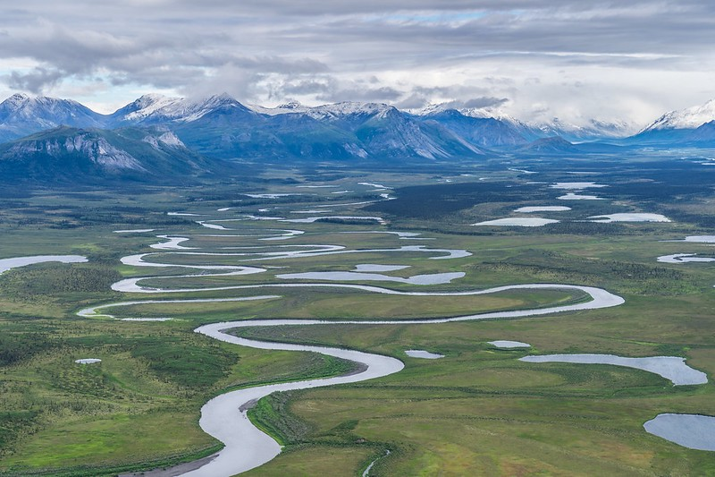 sinuous rivers in Arctic National Wildlife Refuge