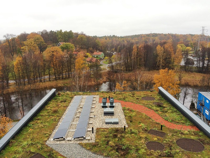 A green roof with PVs on top to capture solar energy.