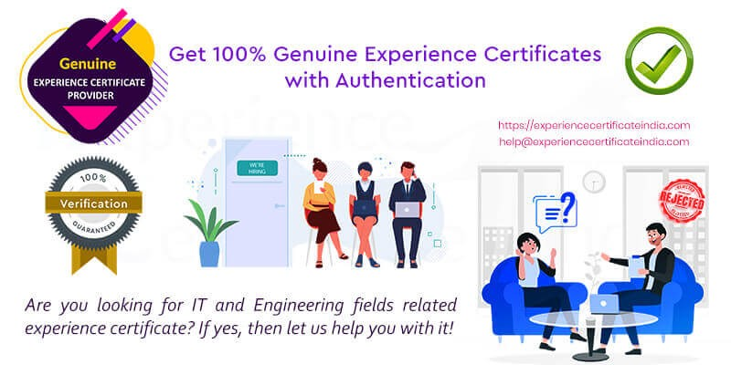 Best Experience Certificate provider
