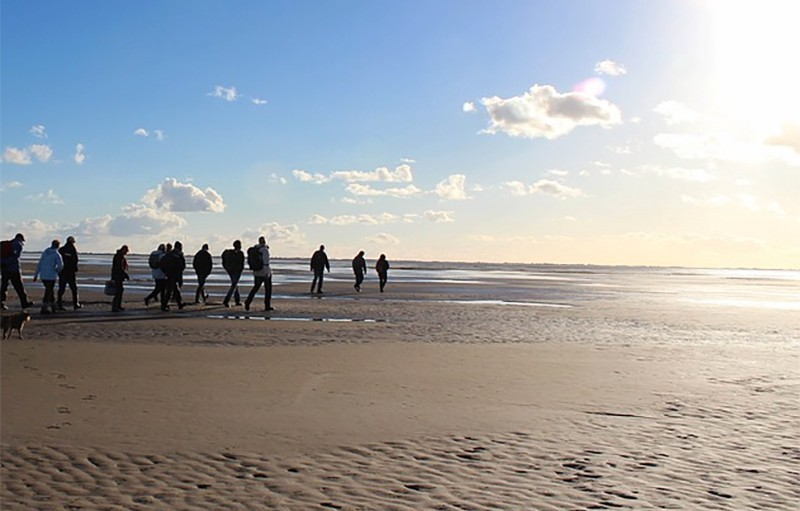 A group of hikers walking along a stretch of beach