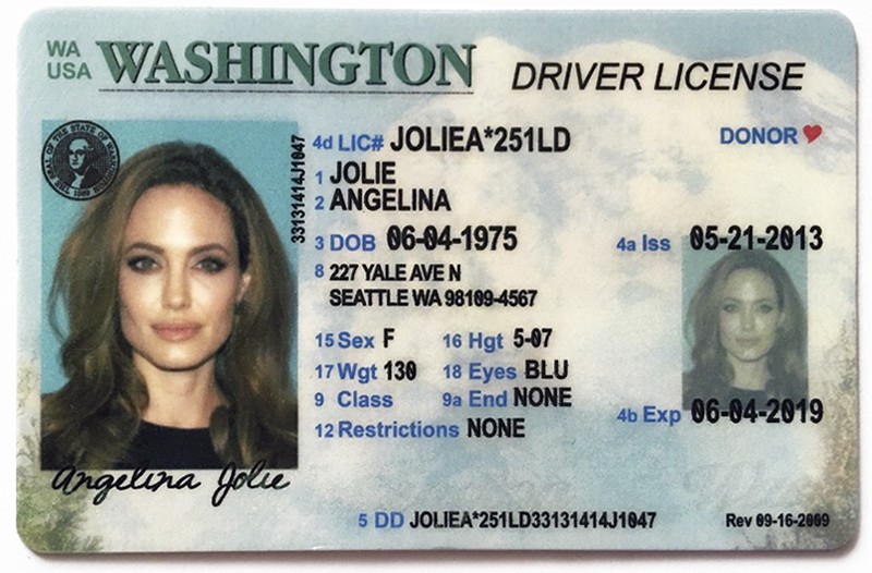 Novelty License and Fake ID Cards for Fun - club Ids - Medium