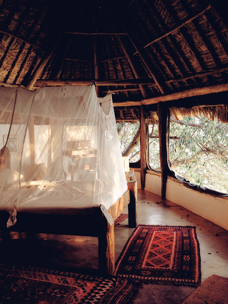 A bed surrounded by nets in a rainforest treehouse.
