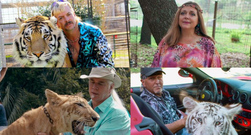 Joe Exotic, Carole Baskin, Doc Antle, and Jeff Lowe pictured with big cats