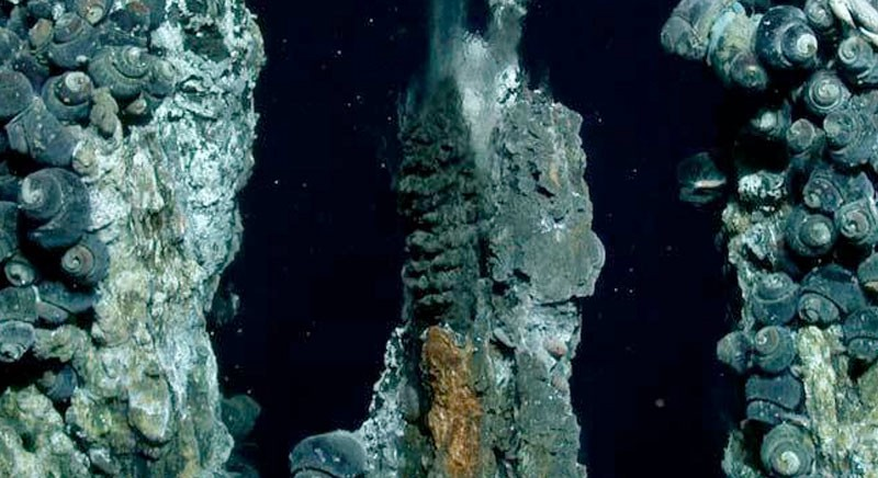 Deep Sea Mining Update Part One One Of The Most Disconcerting Proposals By World Ocean Observatory World Ocean Forum Medium