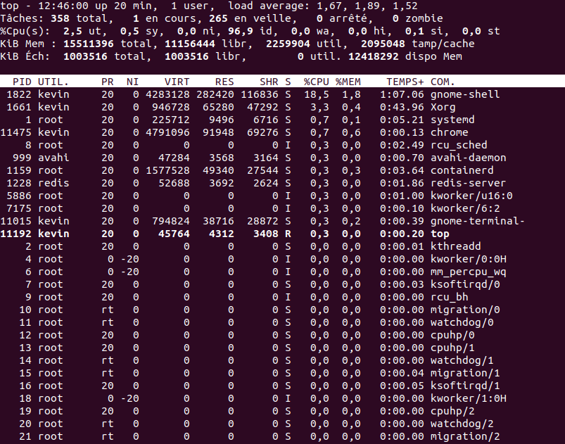 An image of a terminal running top command