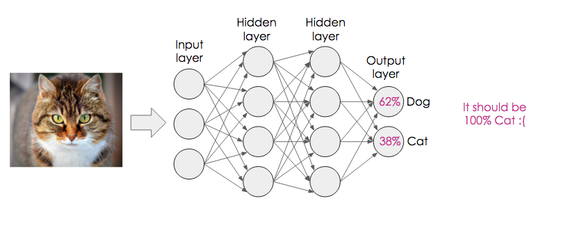 A diagram showing an image of a cat being fed into a 4-layer network