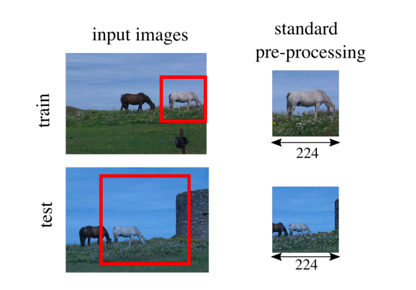 The different image preprocessing steps taken at train and test results in the horse appearing smaller at test time.