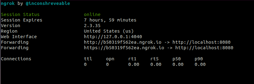 Screenshot of the ngrok console where we can find the random generated DNS for our webserver
