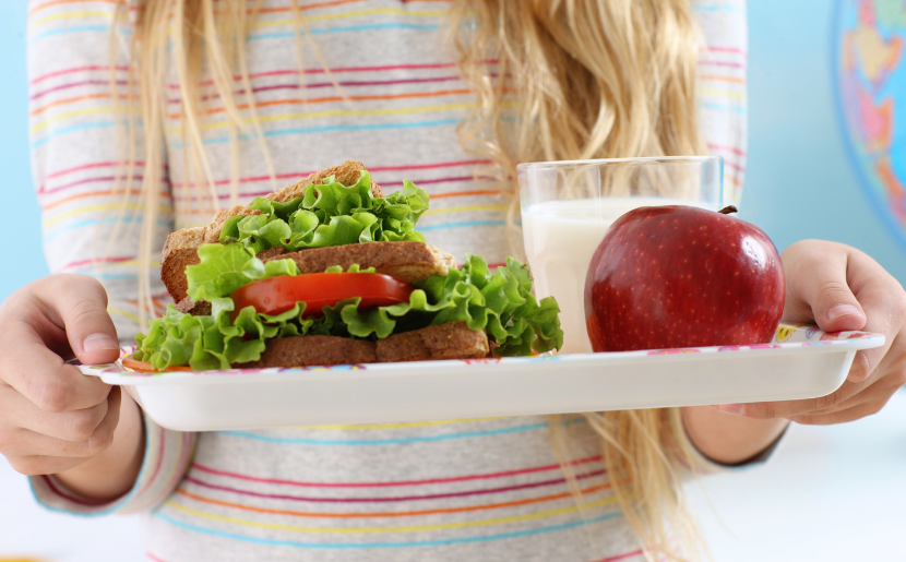 A student holds a lunch with a sandwich, apple, and milk