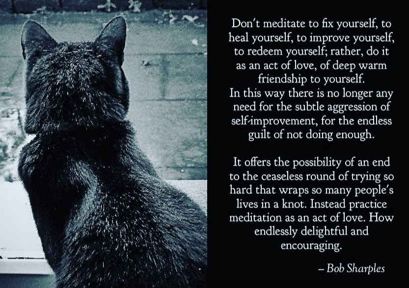 """""""Don't meditate to fix yourself, to heal yourself, to improve yourself, to redeem yourself; rather, do it as an act of love,"""